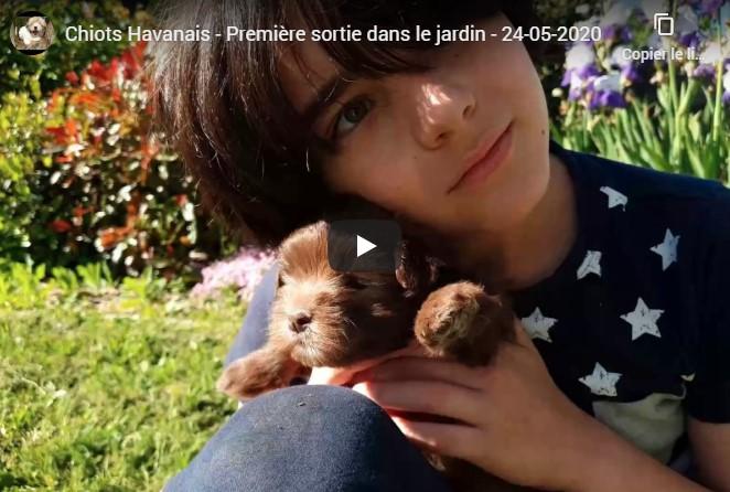 Vidéo première sortie dans le jardin pour Roxane et Ruffy